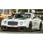 Bentley Continental Gt3 Goodwood Festival Of Speed 2013 True Scale Miniatures 1:18 TSM141829R